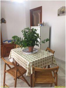 ORCHIDEA2 - Casa Vacanze - Pollara 8