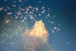 Panarea: camini vulcanici nel fondale tra l'isola e Basiluzzo