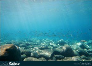 Photogallery Isola di Salina 13
