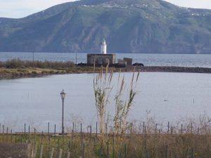 Photogallery Isola di Salina 40