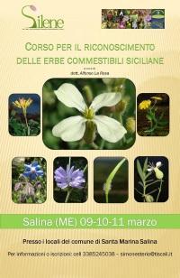 Salina: dal 9 al 11 marzo il corso per il riconoscimento delle erbe commestibili siciliane